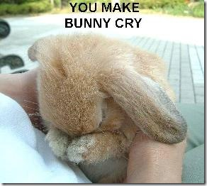 bunnycry